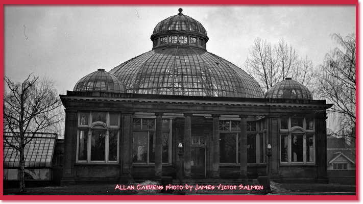 Allan Gardens photo by James Victor Salmon